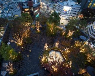 """東京の中心地に輝く""""森""""が!「OMOHARA Christmas illumination」を満喫しよう"""
