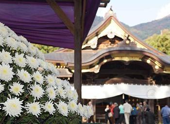 鮮やかな菊の祭典&紅葉も見頃!新潟県の弥彦神社で「弥彦菊まつり」が開催