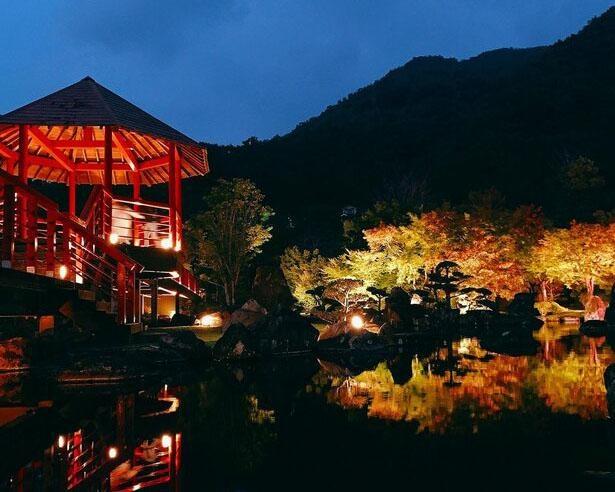 広大な日本庭園をライトアップ、中津市の溪石園で「溪石園ライトアップ」開催中