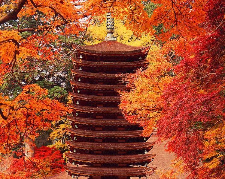 幻想的な景色が広がるライトアップも必見、桜井市の「談山神社」で紅葉が見頃