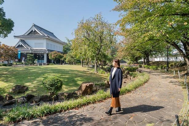 もみじやサクラが紅葉する秋の公園も美しい(写真は10月20日に撮影)/勝竜寺城公園
