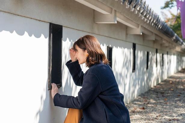 敷地を囲む白壁には、敵を狙い撃ちするための小窓・狭間(はざま)も再現されている/勝竜寺城公園