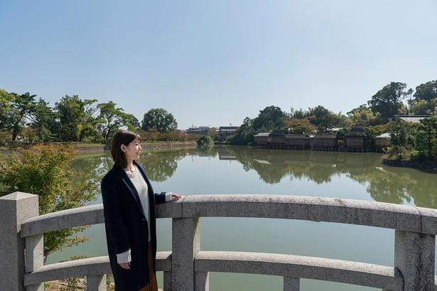 境内の東側に広がる八条ヶ池。石の太鼓橋や入口正面にそびえる高さ9.75mの大鳥居など見どころが多い/長岡天満宮