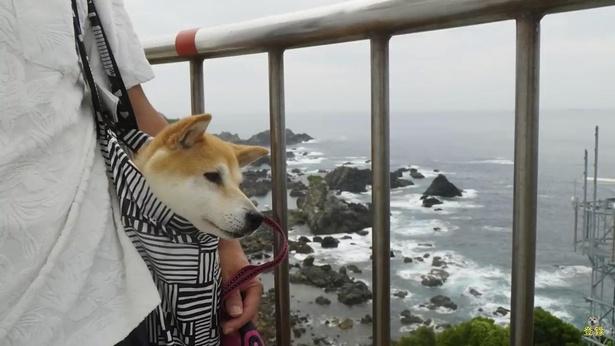 30mの断崖に立つ白亜の灯台を上ると、眼下には太平洋の大海原