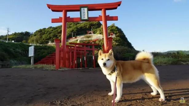 「元乃隅神社」には朝早く到着したので人も少なく、清々しい!
