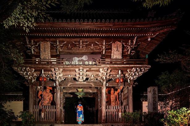 【写真】東京カメラ部がプロデュースしたライトアップで境内ともみじを満喫