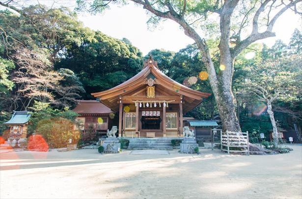 四季折々の花が鮮やかな縁結びの名所「宝満宮 竈門神社」。『鬼滅の刃』の聖地としても話題に