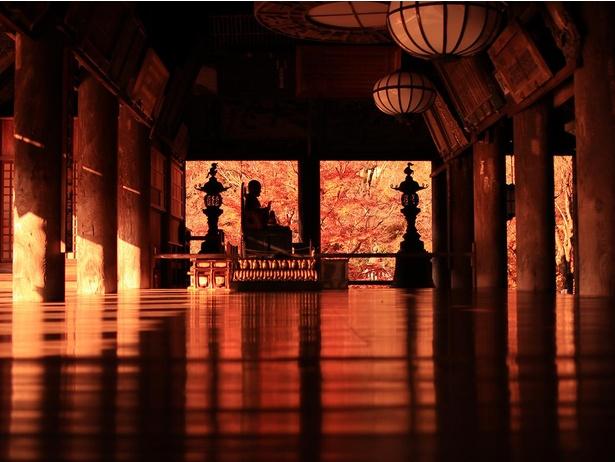 【写真】礼堂の床が真っ赤に染まる「床もみじ」は必見