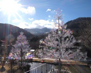ガラスと光の幻想的な世界を堪能!箱根ガラスの森美術館で「クリスタル・イルミネーション ─陽光と風に輝くクリスマス─」が開催中