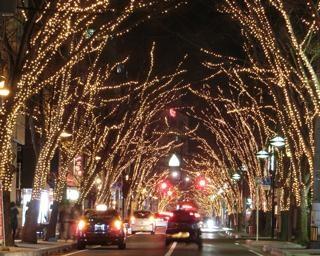 冬の訪れを告げるイルミネーション!新潟駅南けやき通りで「NIIGATA光のページェント」が開催