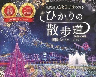 県内最大のイルミネーション、沖縄市の東南植物楽園で「ひかりの散歩道2020-2021」開催中