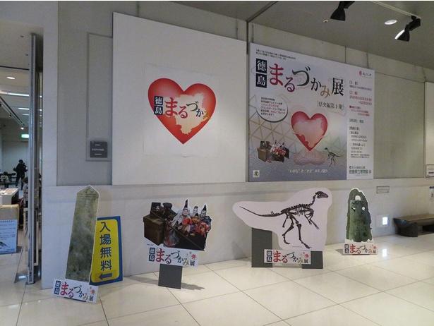 【写真】「徳島まるづかみ展・県央編 第1期」は文化の森多目的活動室で開催中