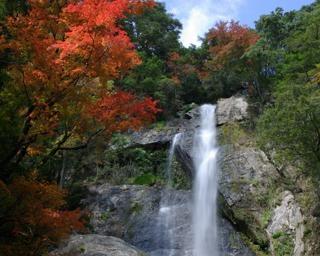 熊本県八代市の五家荘で県内屈指の紅葉が見頃