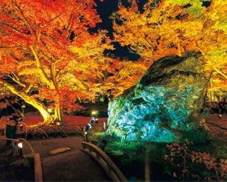 密を避けて楽しむ京都・嵐山の紅葉!美術館や湯豆腐も満喫