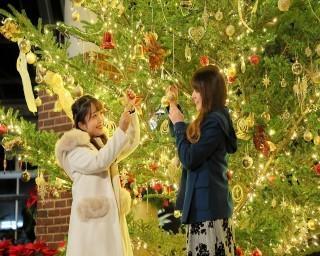 日本夜景遺産のイルミネーションを堪能!群馬県前橋市でウィンターイルミネーション「妖精たちの楽園」が開催中