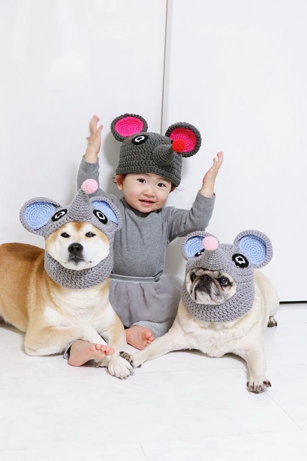 ネズミになっちゃった!