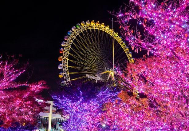 よみうりランドでクリスマスをまるごと楽しもう!※画像はイメージ
