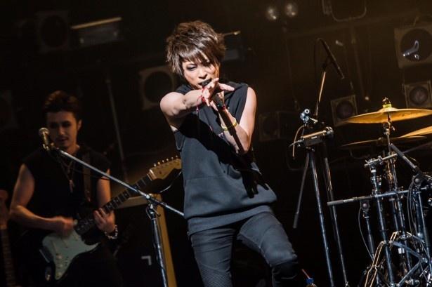 haderu率いるjealkbのライブを放送!