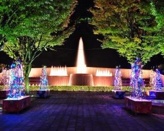 願いごとの短冊で装飾された手作りツリーは必見!福井県鯖江市で「西山公園イルミネーション『光でつなぐ家族の絆』」が開催中