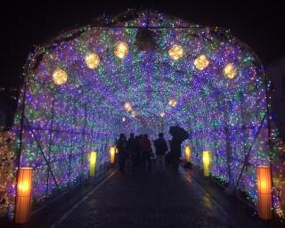 温泉街で楽しむイルミネーション!北海道の洞爺湖温泉で「イルミネーショントンネル」が開催中