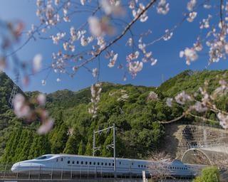 """【九州】""""列車が見える絶景""""の旅〜八代市編〜"""