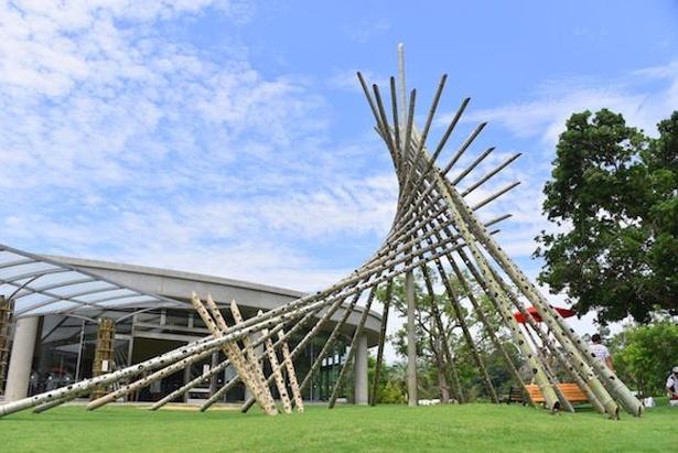 竹の背の高さを利用し、空を突くような迫力あるアート作品も