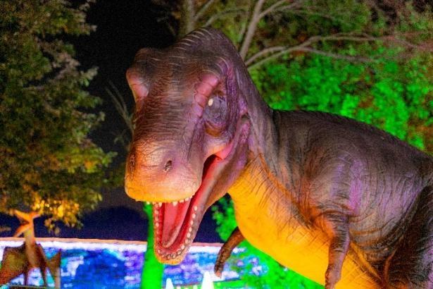 恐竜が登場し、ファミリーにも大好評