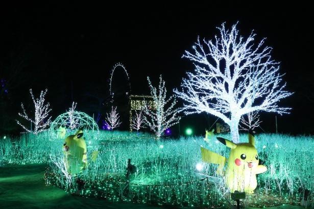 ピカチュウが大集合する「ピカチュウの光の森」
