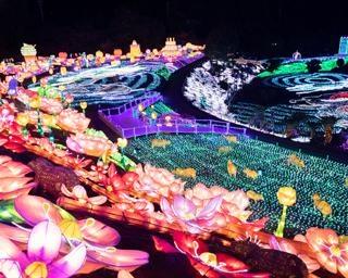 人気の体験型イルミネーション、静岡県伊東市で「伊豆高原グランイルミ~6thシーズン~」開催中