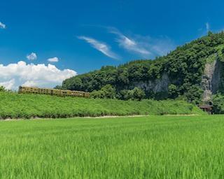 """【九州】""""列車が見える絶景""""の旅〜豊後大野市編〜"""