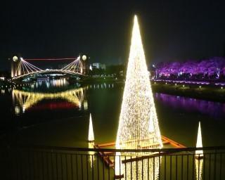 水辺が幻想的に彩られる、富山県富山市で「環水公園スイートイルミネーション2020」が開催中