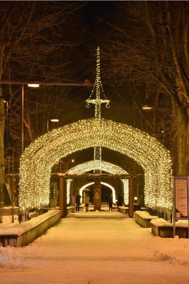 【写真】幻想世界への入口のような7条緑道の光のトンネル