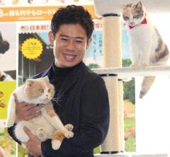 伊藤淳史、猫ちゃんに癒されまくり!猫カフェで映画試写会イベントが開催