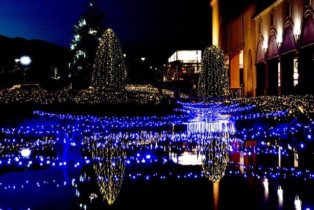 【写真】シャンパンゴールドとスノーフォールの2色の光は、見る人を華やかな気持ちにさせる
