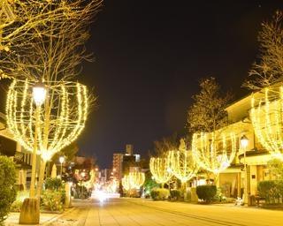未来への希望の光が輝く、長野県長野市で「善光寺表参道イルミネーション」開催