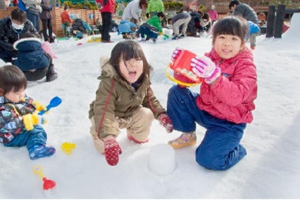 約240平方メートルに雪が広がる「雪あそび広場」。普段雪に触れる機会の少ない子どもなら夢中になること間違いなし!