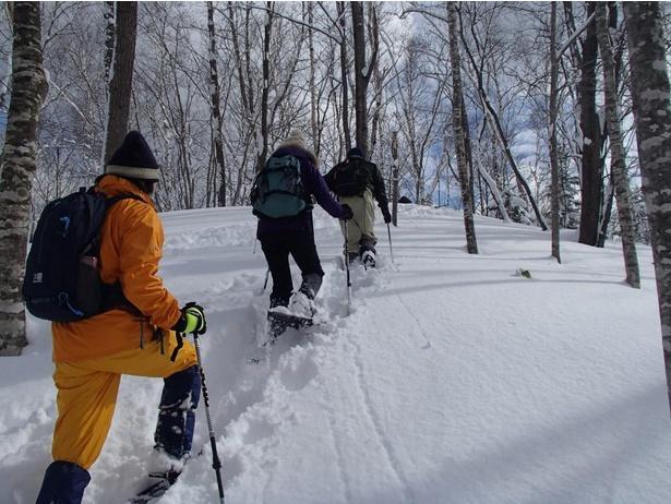 【写真】スノーシューは、森の中を歩くコースや、高台の景色が楽しめるコースなど、全部で3つのコースがある