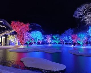 16万球の電球が松島の庭園を彩る!宮城県宮城郡松島町で「2020SENDAI松島離宮 光のページェント」が開催中
