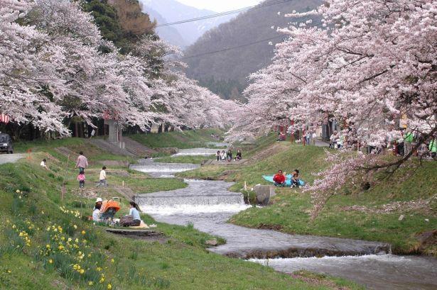 春には桜とともに楽しめる猪苗代湖