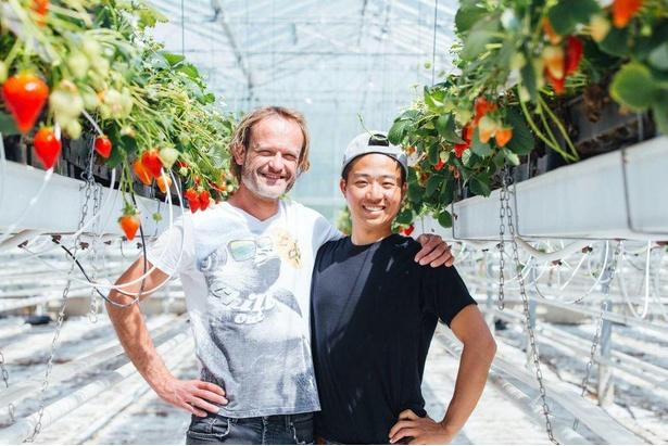 オランダでいちごの栽培を学んだ井上隆太朗代表(写真右)が2020年に開園 / 井上寅雄農園