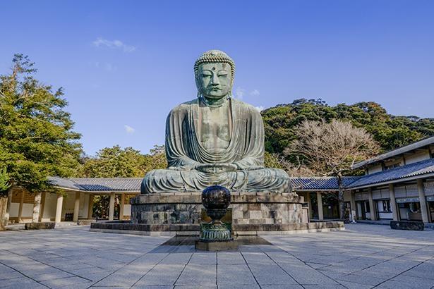 鎌倉で唯一国宝に指定されている鎌倉大仏。凛と佇む姿は圧巻だ