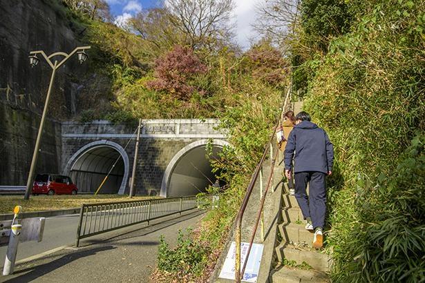 トンネル脇の狭い階段がハイキングコースの入り口。うっかり見逃すところだった(笑)