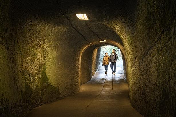 参道の洞窟は少し冷んやり。「洞窟を通ってお参りするって珍しいよね」と三ツ石さん