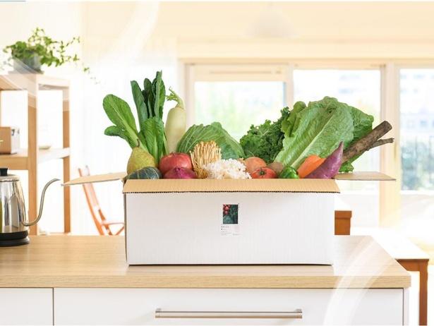 美味しい状態を保つためにチルド配送される厳選野菜の青果BOXを楽しめる