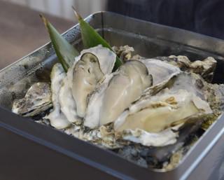 クリアのご褒美は牡蠣!宮城県東松島市で「第3回 東松島宝探し」が開催中