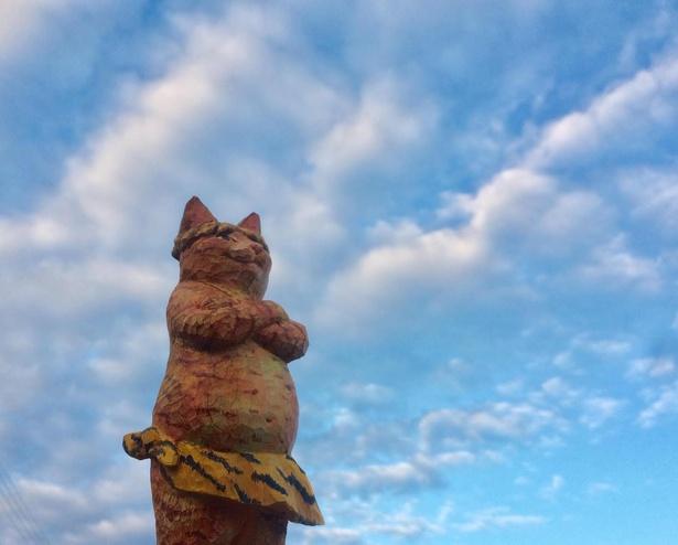 青空の下で鬼に扮する「鬼猫」
