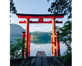 箱根神社の見どころ徹底ガイド!関東総鎮守の歴史ある神社をお参りしよう【コロナ対策情報付き】