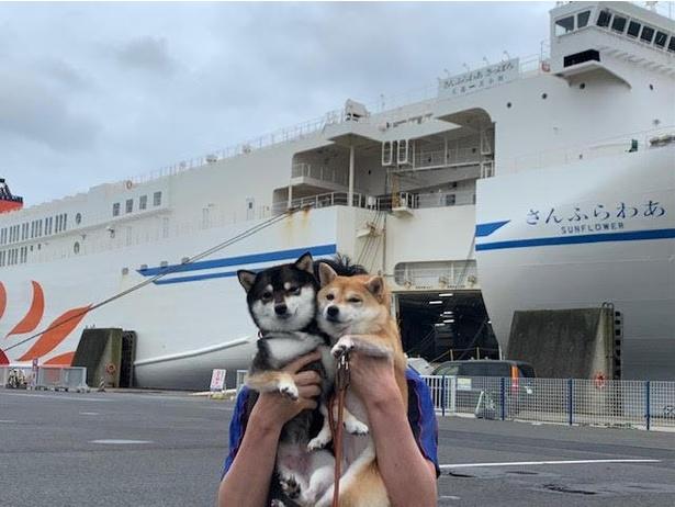 フェリーに乗って北海道へ出発!