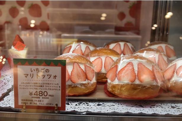 日本でもブームの兆しが見えるイタリア・ローマの伝統菓子「マリトッツォ」