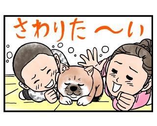 柴犬小春ちゃんの正式名は「駒の小春号」!4コマ漫画の配信がスタート